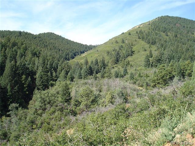 12709 Cottonwood Trail, Littleton, CO 80127