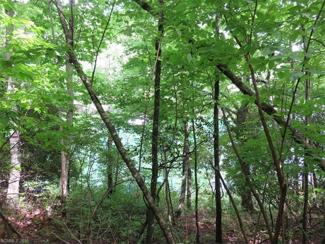 U9 L26 Connestee Trail U09 L026, Brevard, NC 28712