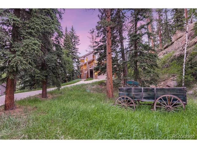 12562 S Elk Creek Road, Pine, CO 80470