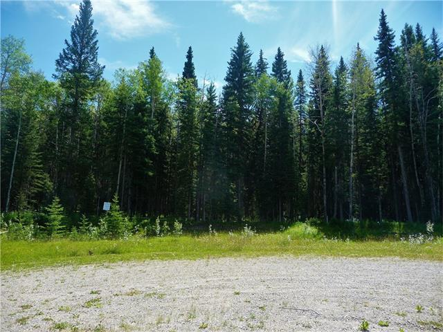 Lot 5 Little Red Estates, Rural Mountain View County, AB T0M 2E0
