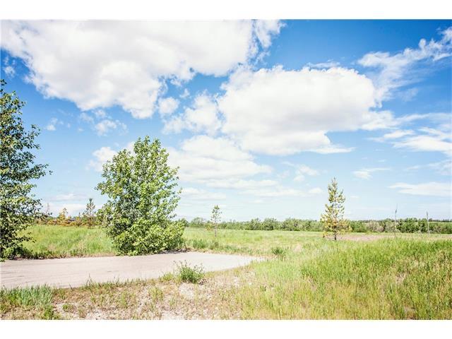 2378 Ravencrest Drive E, Rural Foothills M.D., AB T1S 1A6