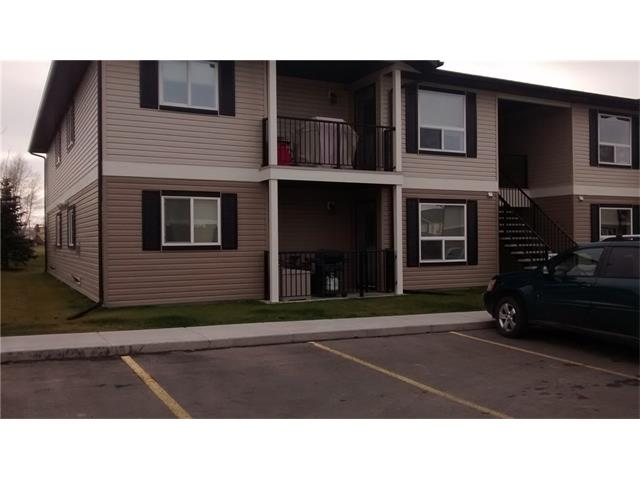 8 Bayside Place 302,, Strathmore, AB T1P 0E1