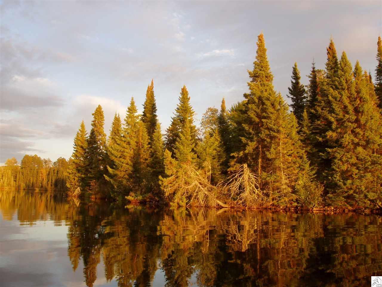 XXXX Muckwa Lake Rd, Ely, MN 55731