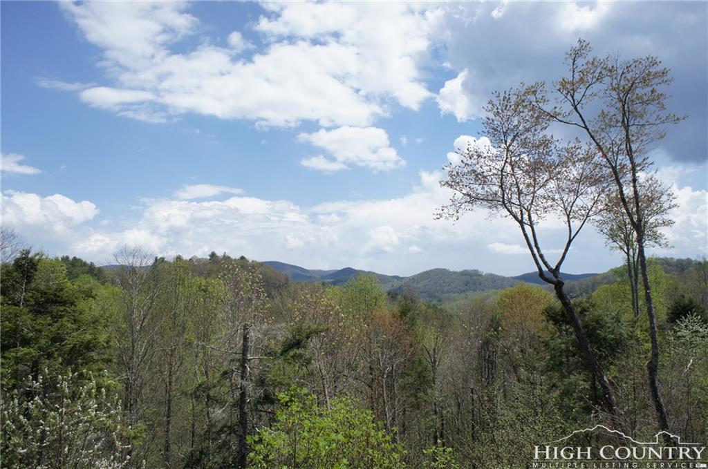 544 Peaceful Haven Drive 1611, Boone, NC 28607
