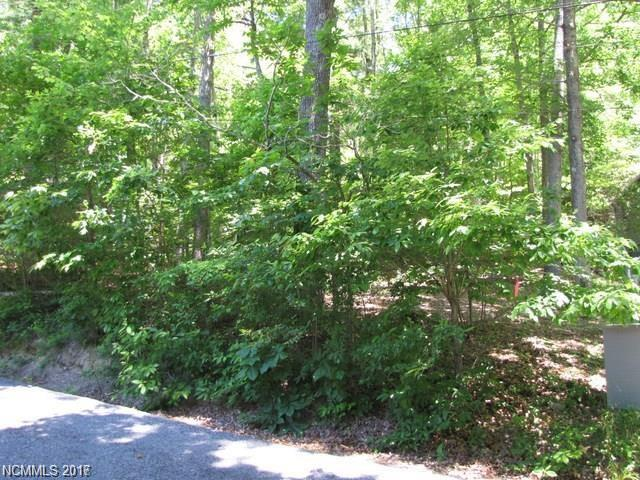 Amazing wooded .36 acre lot with view of Pinnacle Mountain & Lake Blue Star. Perfect place for a summer cabin or a year round home.  Private but just minutes from Hendersonville and Historic Flat Rock.  Did perc for a 3br home in 2001.