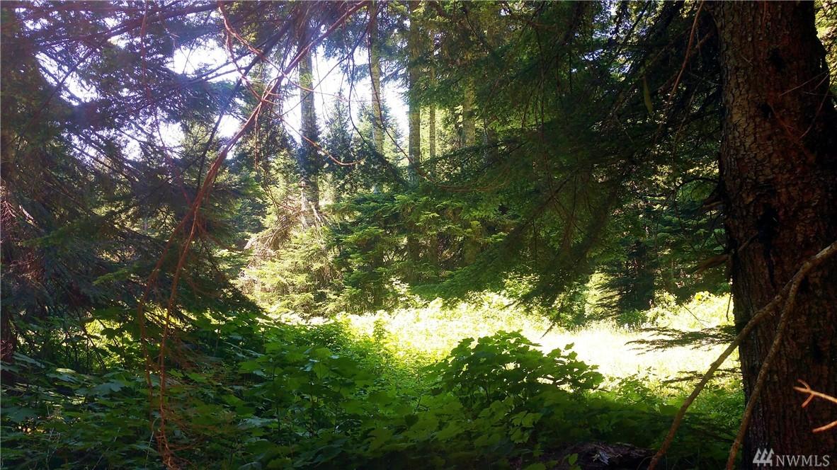 Huckleberry Peak Rd, Snoqualmie Pass, WA 98068