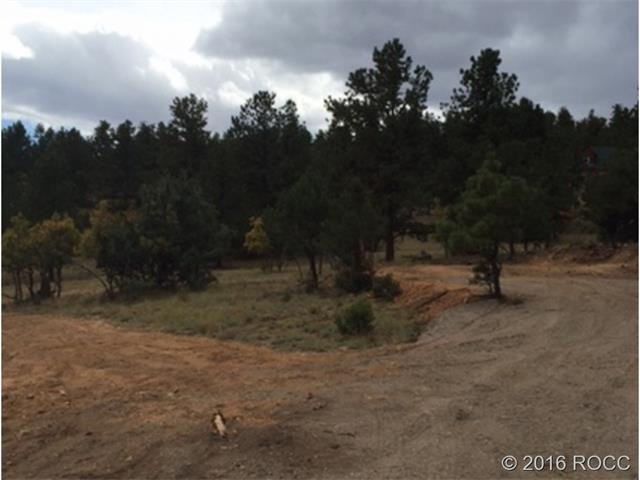 BIRDPOINT Drive, Cotopaxi, CO 81223