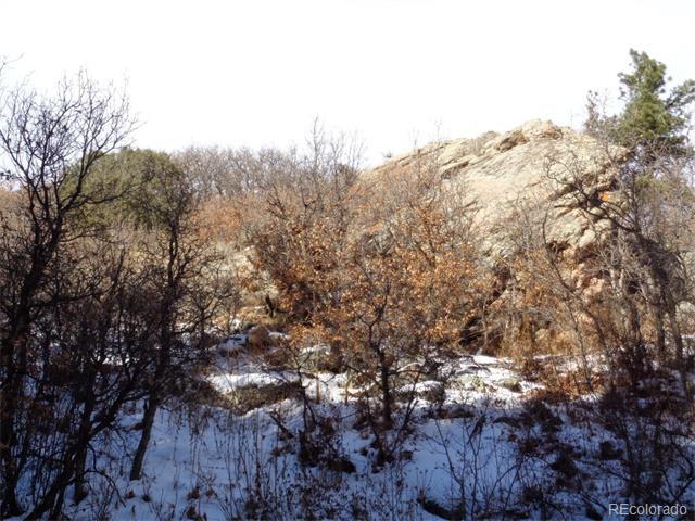 10951 S Deer Creek Road, Littleton, CO 80127
