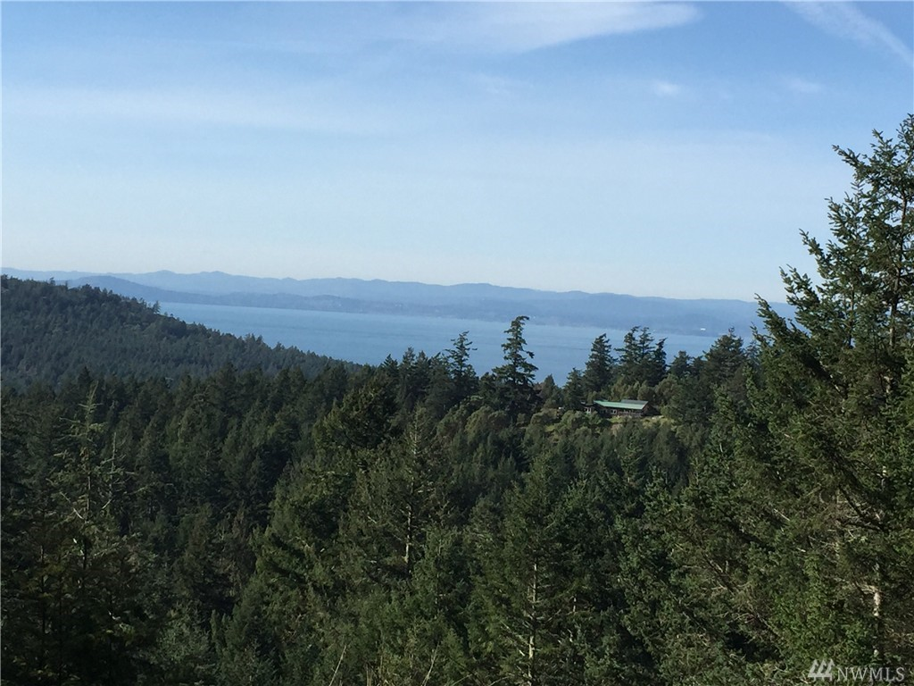 Capron Rd, Friday Harbor, WA 98250