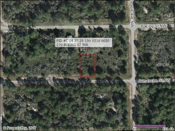 225 COMANCHE STREET NW, LAKE PLACID, FL 33852