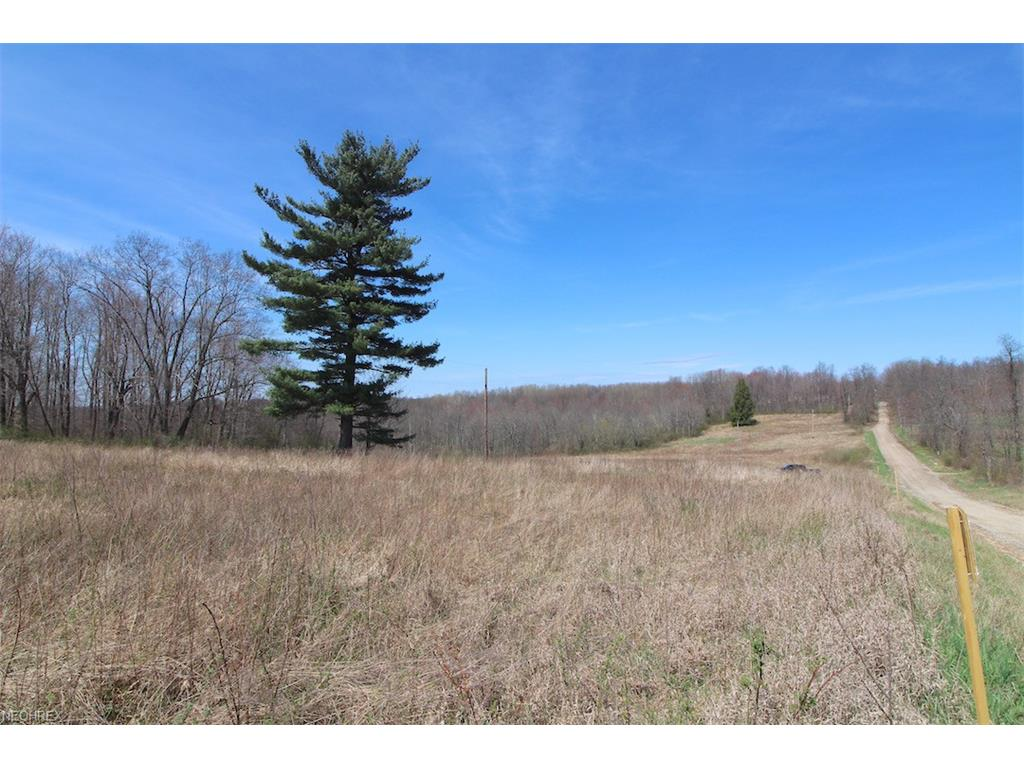 Township Road 29, Warsaw, OH 43844