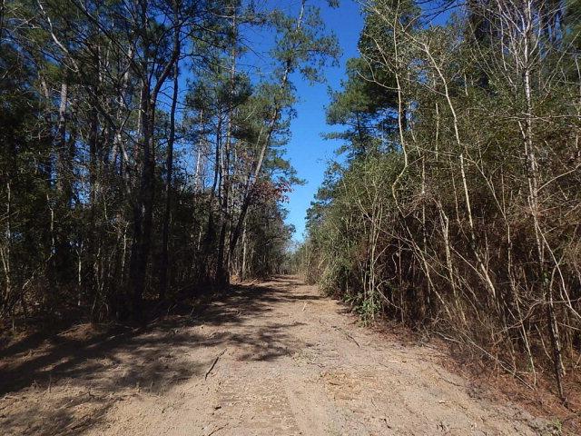 Kirklin Road, Tylertown, MS 39674