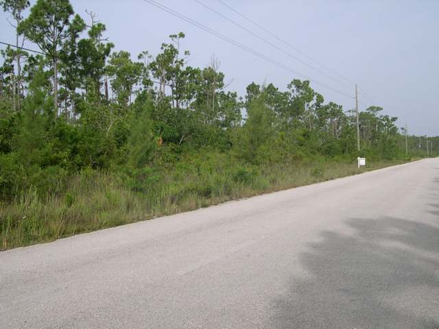 LOT 15 GREAT ABACO HWY., Abaco,  00008