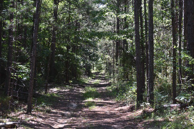 000 Bonds Road, Other, MS 39069