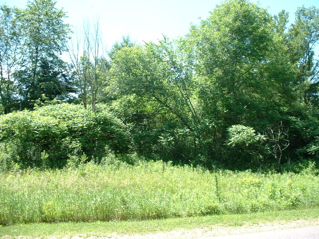 Lot 3 5.01ac Doug Blegen Drive, Spring Valley, WI 54767