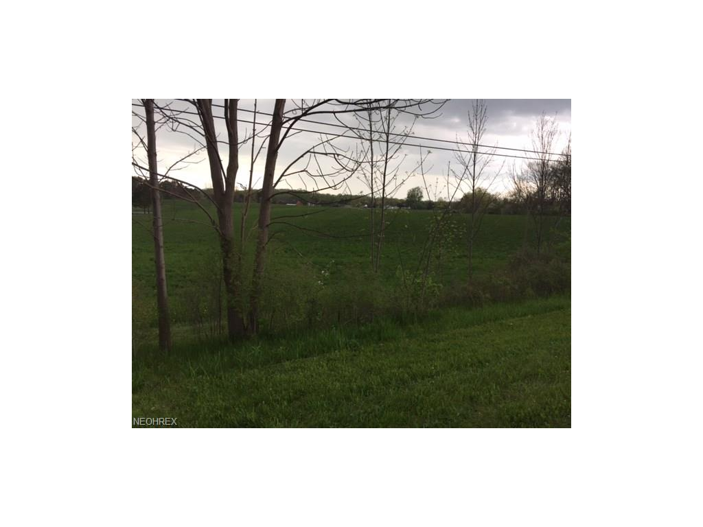 Breezewood Dr, Painesville, OH 44077