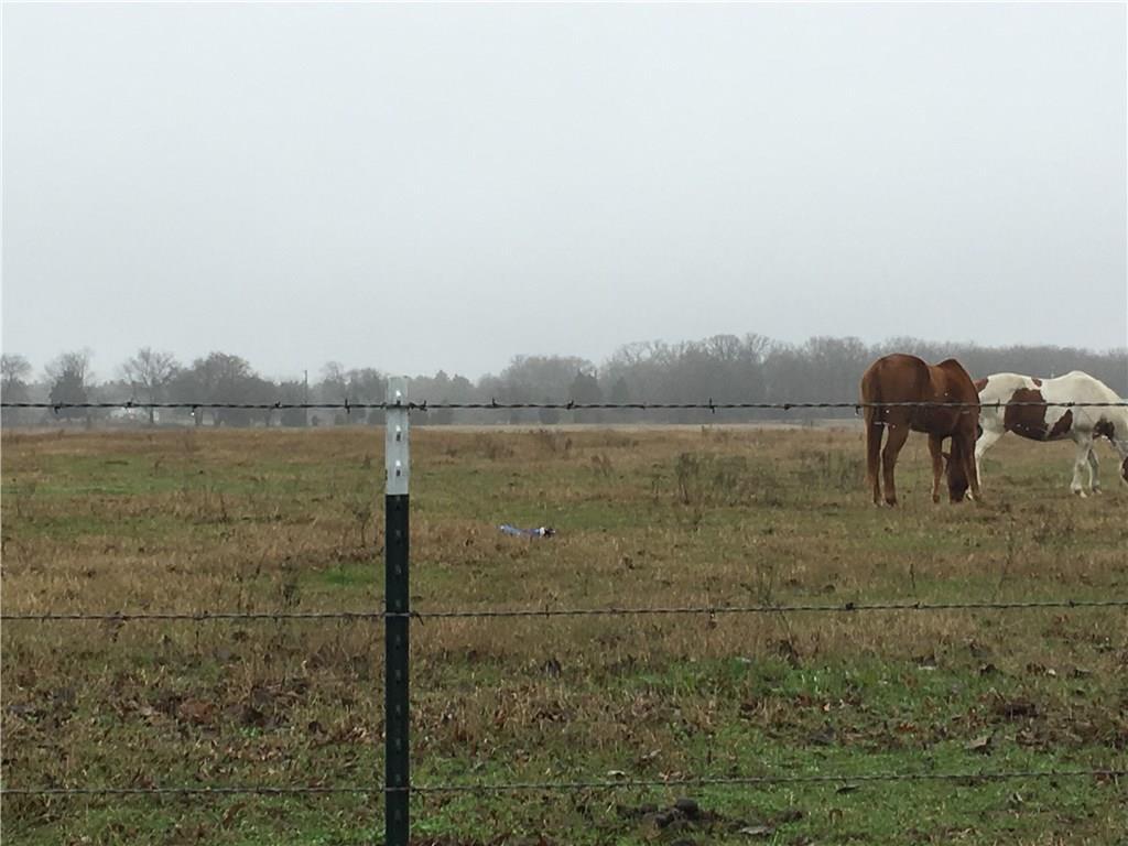 00000 VZ County Road 2141, Canton, TX 75103