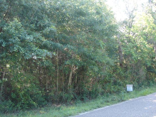 Pinewood Av, Elberta, AL 36530