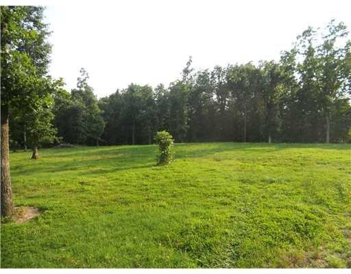 15556 Cincinnati Creek RD, Summers, AR 72769