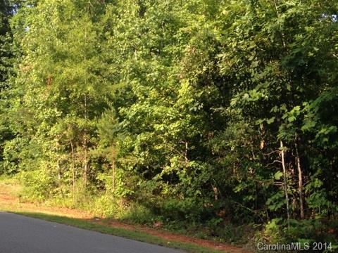 Lot 10 New Castle Court 10, Albemarle, NC 28001