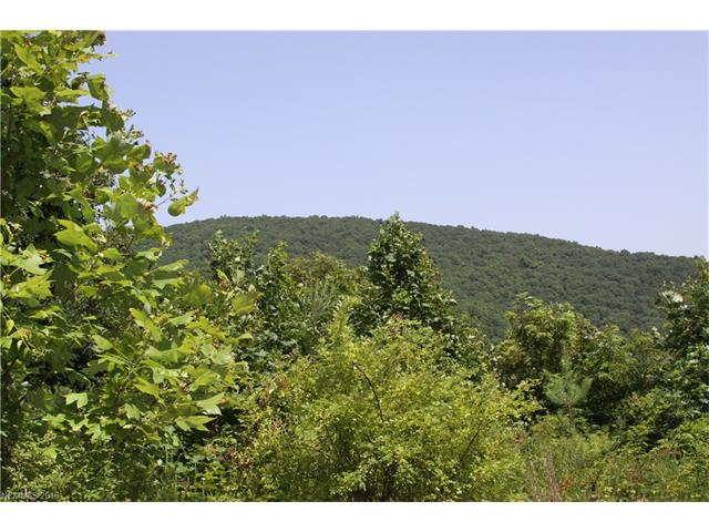 14 Crossing Circle 5, Fairview, NC 28730