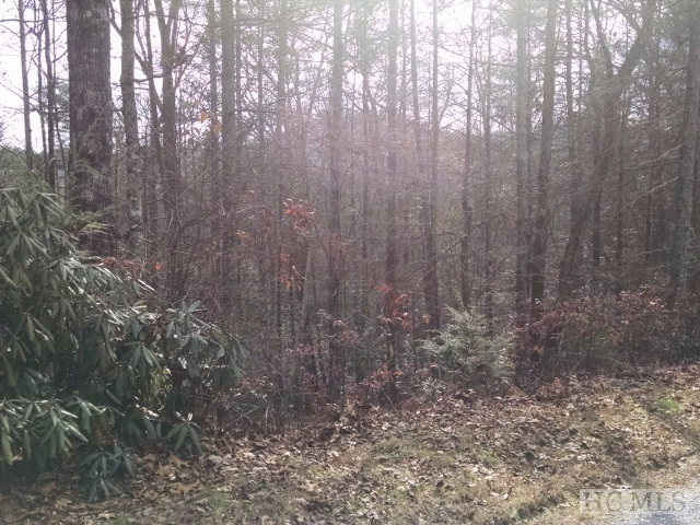 Lot 132 Upper Whitewater Road, Sapphire, NC 28774