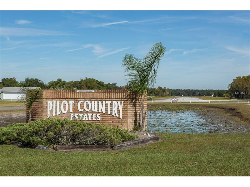 11500 PILOT COUNTRY DRIVE, SPRING HILL, FL 34610