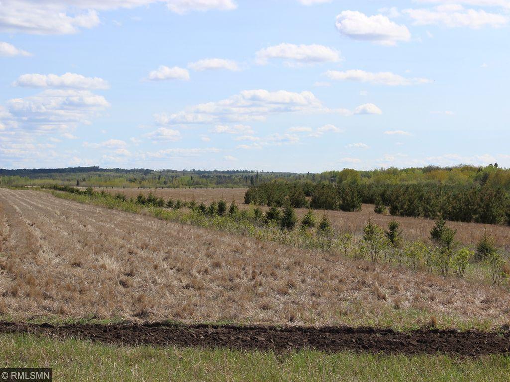 xxx State Highway 225, Ponsford, MN 56575