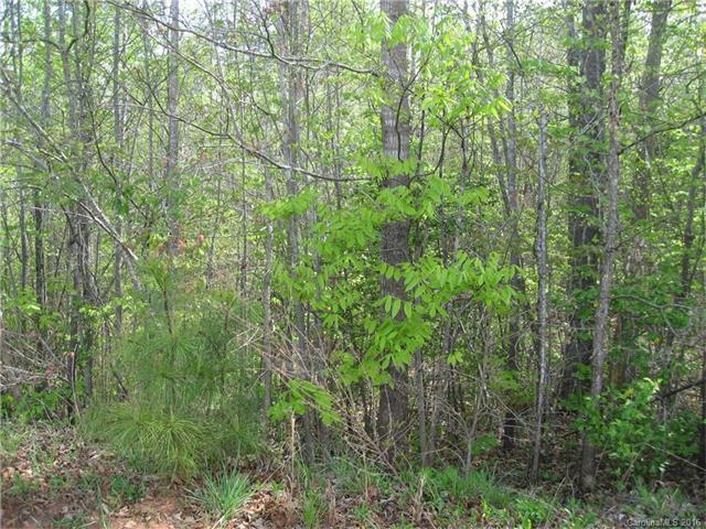 lot 25 Long Cedar Lane 25, Alexis, NC 28006