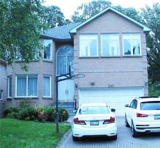 248 Princess Ave Upper, Toronto, ON M2N 3S1
