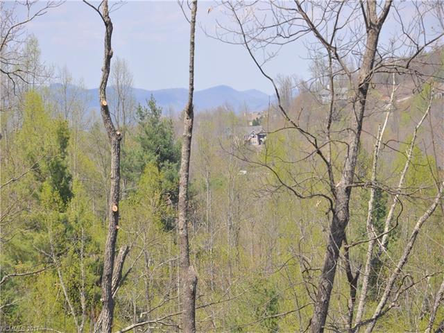 Views, easy build site, drive roughed in, expired 4 BR septic permit, more view opening coming soon,  covenants call for 2400 SF minimum.  This site is above the road and offers privacy and views north and north west.